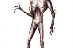 simonebonomohorus1